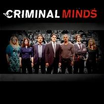 Mentes Criminosas (8ª Temporada) - Poster / Capa / Cartaz - Oficial 2