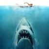 """Clássico """"Tubarão"""" será exibido com trilha sonora ao vivo neste domingo no MIS"""