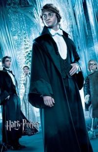 Harry Potter e o Cálice de Fogo - Poster / Capa / Cartaz - Oficial 9