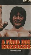 A Fúria dos Kickboxers (Tian long lan)
