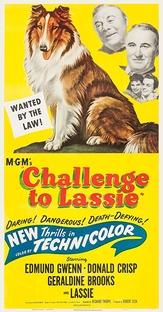 Desafio de Lassie - Poster / Capa / Cartaz - Oficial 3