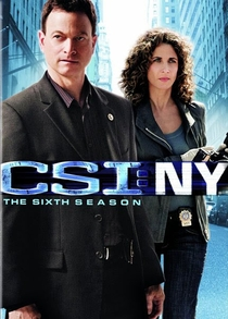 CSI: Nova York (6ª temporada) - Poster / Capa / Cartaz - Oficial 1