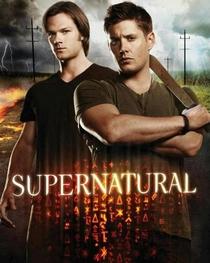 Sobrenatural (8ª Temporada) - Poster / Capa / Cartaz - Oficial 4