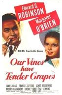 O Roseiral da Vida (Our Vines Have Tender Grapes)