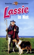 Desafio de Lassie (Challenge to Lassie)