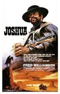 Vingança Selvagem (Joshua)