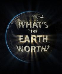 Quanto Vale a Terra? - Poster / Capa / Cartaz - Oficial 1