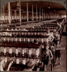 Capitalism: Child Labor (Capitalism: Child Labor)