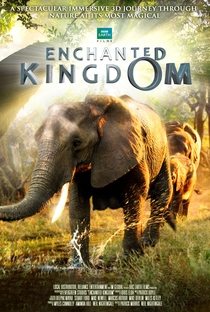 Enchanted Kingdom - Poster / Capa / Cartaz - Oficial 2