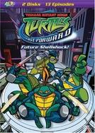As Tartarugas Mutantes Ninja (6ª Temporada) (Teenage Mutant Ninja Turtles (Season 6))