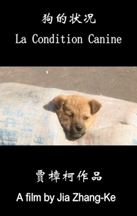A Condição Canina - Poster / Capa / Cartaz - Oficial 1