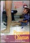Pequenas Chamas - Poster / Capa / Cartaz - Oficial 2
