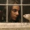 HBO divulga teaser de série inspirada em A Bússola de Ouro