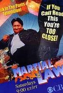Um Policial da Pesada (1ª Temporada) (Martial Law (Season 1))
