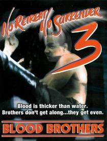 Os Irmãos Kickboxers - Poster / Capa / Cartaz - Oficial 1