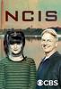 NCIS: Investigações Criminais (15ª Temporada)
