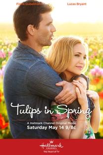 Tulips in Spring - Poster / Capa / Cartaz - Oficial 1