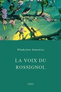 A voz do rouxinol - Poster / Capa / Cartaz - Oficial 1