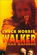 Reunião Mortal (Walker Texas Ranger 3: Deadly Reunion)