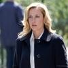 'The Fall' terá segunda temporada | Temporadas - VEJA.com