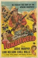 A Ronda da Vingança (Tumbleweed)