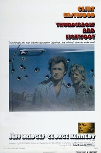 O Último Golpe - Poster / Capa / Cartaz - Oficial 3