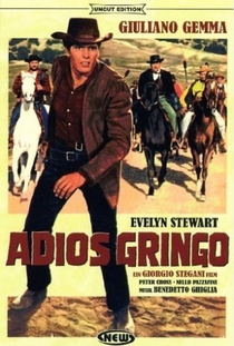 Adeus Gringo - Poster / Capa / Cartaz - Oficial 4