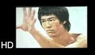El Testamento de Bruce Lee (Dragon Lee, Ron Van-Clief)