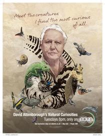 Curiosidades da Natureza - Poster / Capa / Cartaz - Oficial 1