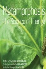 Metamorfose: A Ciência Da Transformação - Poster / Capa / Cartaz - Oficial 1