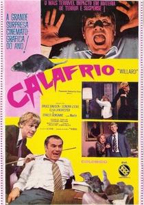 Calafrio - Poster / Capa / Cartaz - Oficial 3