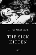 O Gatinho Doente (The Sick Kitten)