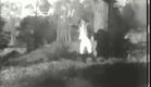 Maniac Chase (1904)
