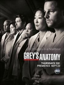 Grey's Anatomy (7ª Temporada) - Poster / Capa / Cartaz - Oficial 4