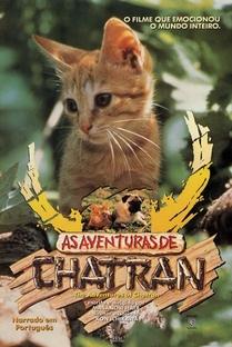 As Aventuras de Chatran - Poster / Capa / Cartaz - Oficial 2