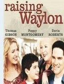 A História de Waylon - Poster / Capa / Cartaz - Oficial 2