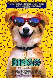 Bingo, Esperto pra Cachorro - Poster / Capa / Cartaz - Oficial 3