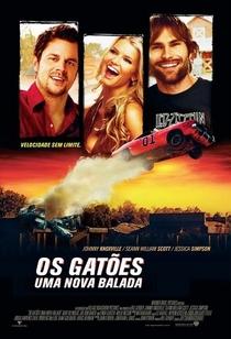 Os Gatões - Uma Nova Balada - Poster / Capa / Cartaz - Oficial 2