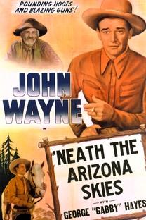 Sob o Sol do Arizona - Poster / Capa / Cartaz - Oficial 3