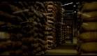 Geada Negra - Trailer