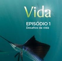 Vida - Episódio 1: Desafios da Vida - Poster / Capa / Cartaz - Oficial 1
