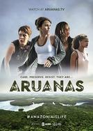 Aruanas (Aruanas)