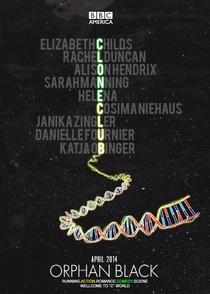 Orphan Black (1ª Temporada) - Poster / Capa / Cartaz - Oficial 3