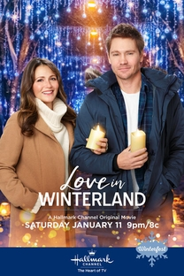 Love in Winterland - Poster / Capa / Cartaz - Oficial 1