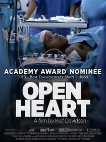 Open Heart - Poster / Capa / Cartaz - Oficial 1