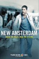 Hospital New Amsterdam (1ª Temporada) (New Amsterdam (Season 1))