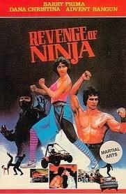 Revenge of Ninja - Poster / Capa / Cartaz - Oficial 1