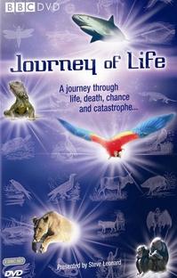 A Aventura da Vida: Evolução - Poster / Capa / Cartaz - Oficial 1