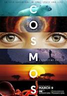 Cosmos: Uma Odisséia No Espaço Tempo (Cosmos: A Spacetime Odyssey)
