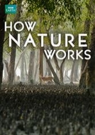 Como a natureza funciona (How Nature Works)